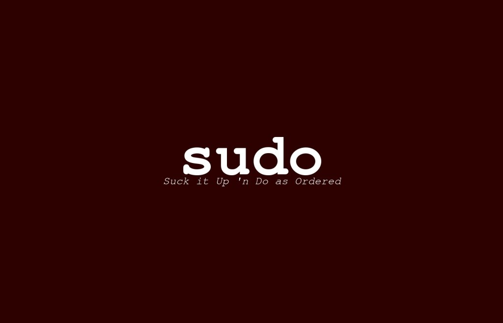sudo - suck it up and do as ordered